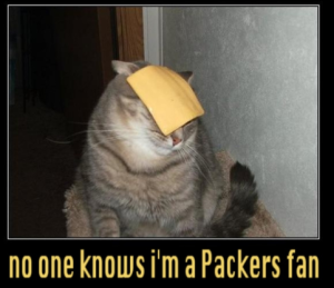 wisconsin cheese cat