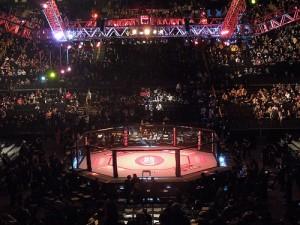 MMA 07-18-2013